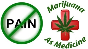 marijuana for pain medication